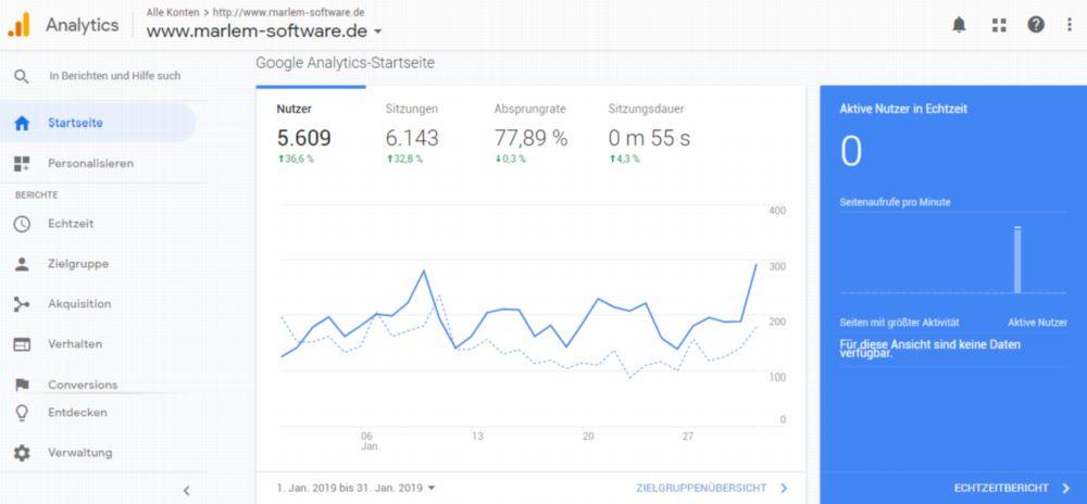 Screenshot Google Analytics 6143 Webseitenbesuche im Januar 2019